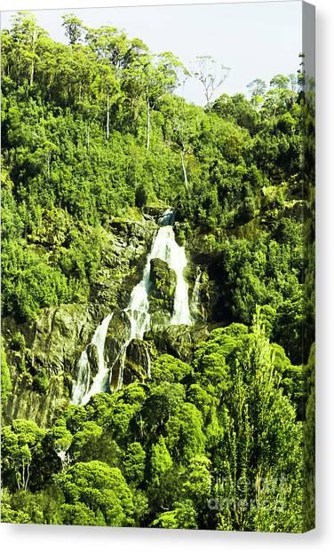 Rainforests Canvas Print - Rainforest Rapids by Jorgo Photography - Wall Art Gallery