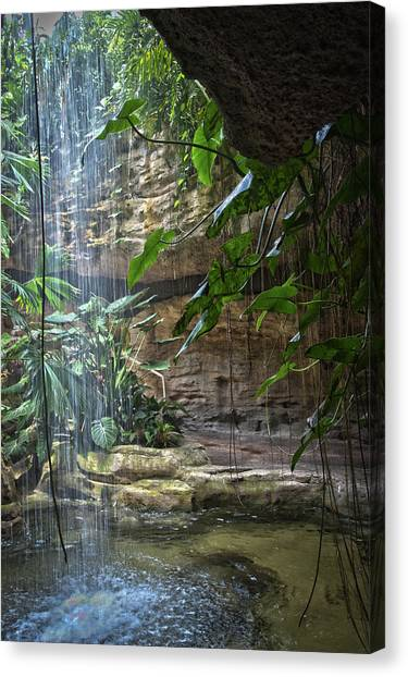 Rainforest Waterfall Canvas Print