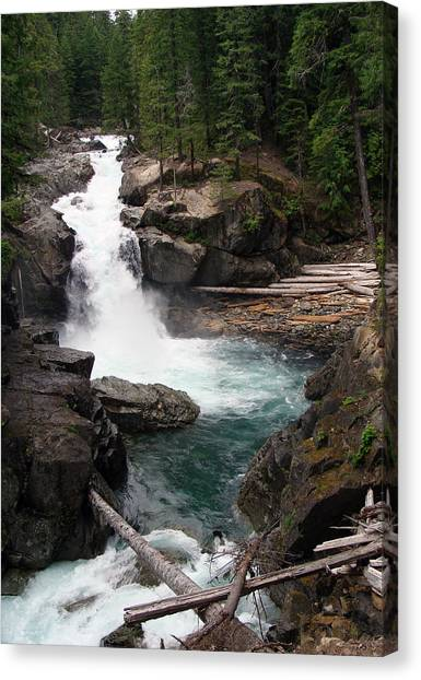 Rainier Waterfall Canvas Print by Ty Nichols