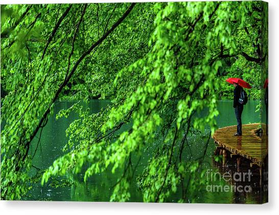 Raining Serenity - Plitvice Lakes National Park, Croatia Canvas Print