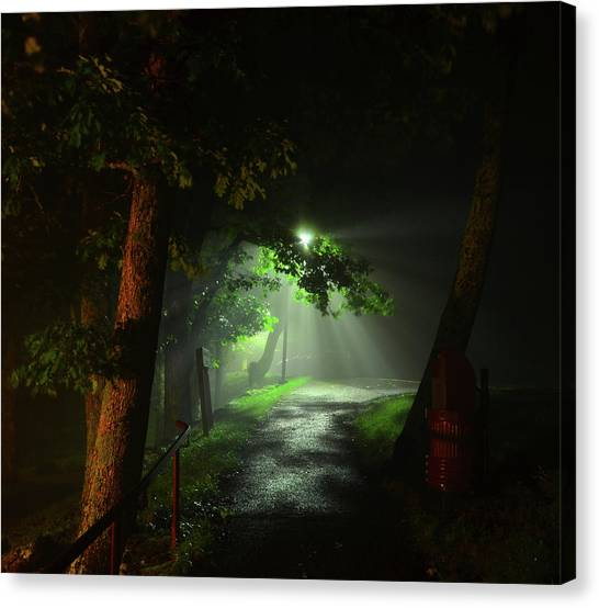 Rainy Night Canvas Print