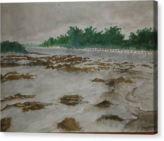 Rainy Season Canvas Print by Bhalchandra Salunkhe