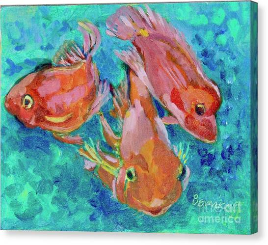 Ramshead Goldfish Canvas Print