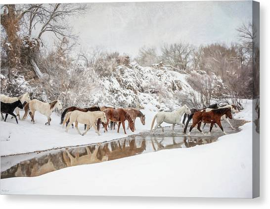 Ranch Horse Winter Canvas Print