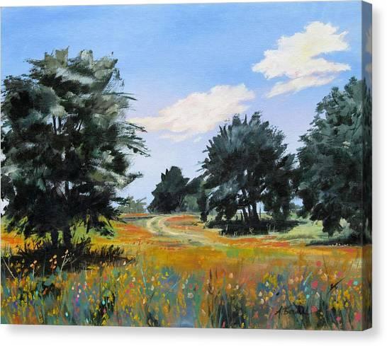 Ranch Road Near Bandera Texas Canvas Print