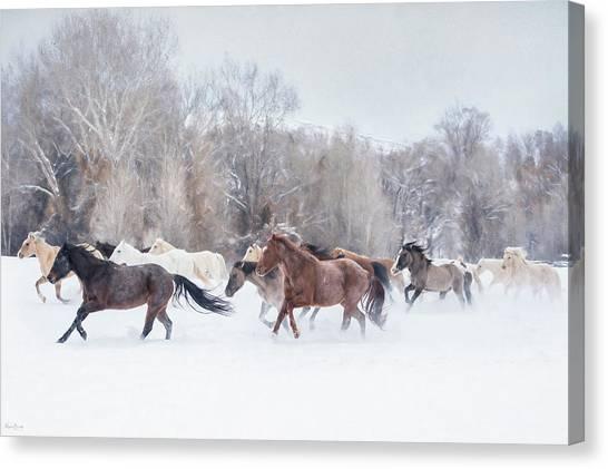 Ranch Run Canvas Print