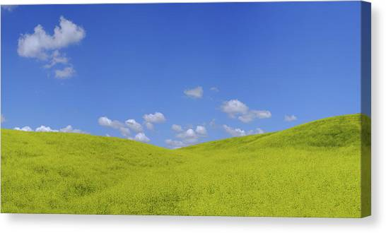 Rapeseed Landscape Canvas Print