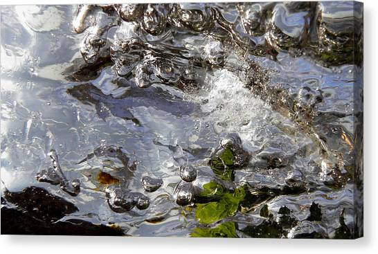 Rapids Swim Canvas Print