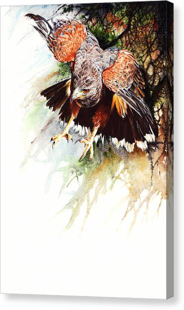Raptor Canvas Print