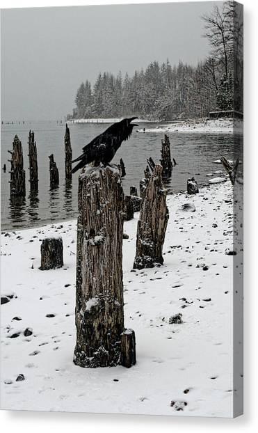 Raven Call Canvas Print