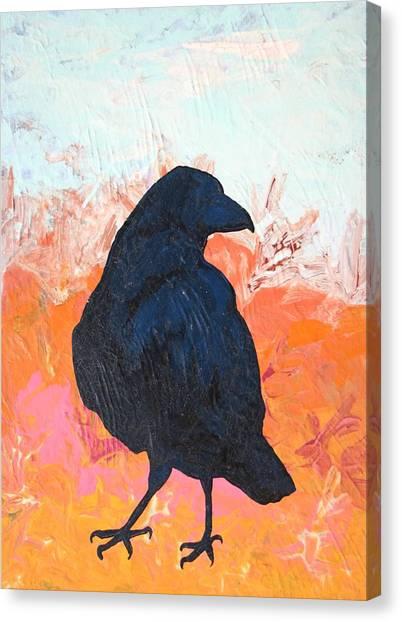 Raven IIi Canvas Print by Dodd Holsapple