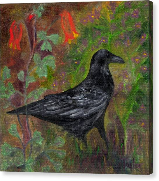 Raven In Columbine Canvas Print
