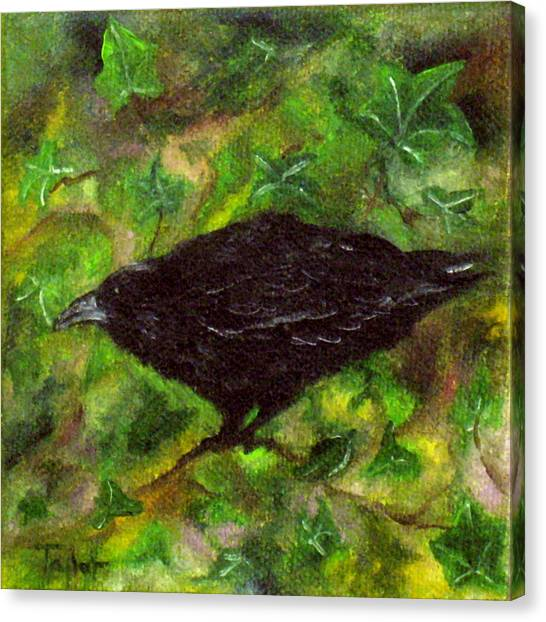 Raven In Ivy Canvas Print