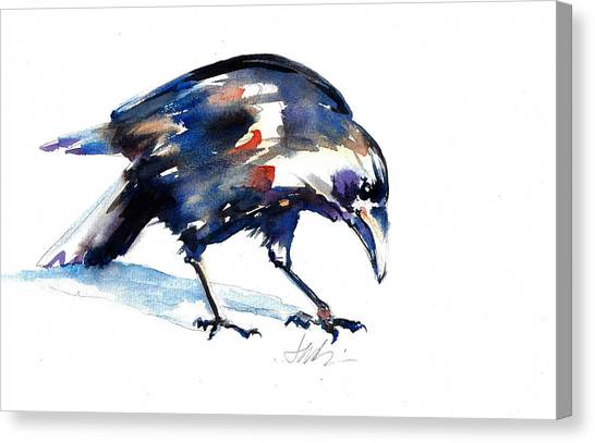 Raven Shadow From Vancouver Canvas Print