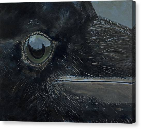 Raven's Eye Canvas Print