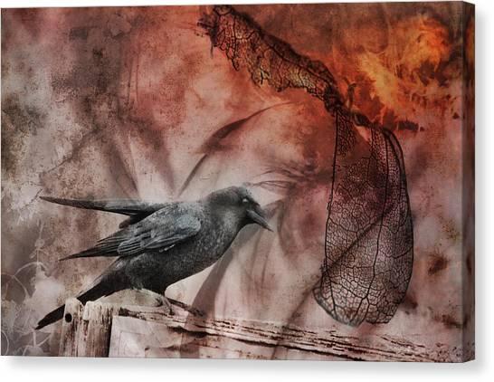 Susan Canvas Print - Ravens Lot by Susan Capuano