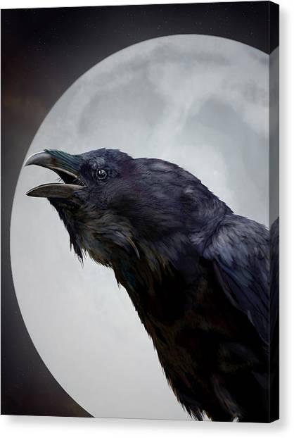 Ravensong Canvas Print