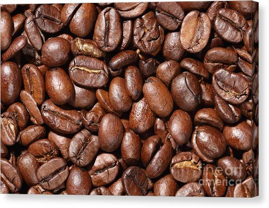 Raw Coffee Beans Background Canvas Print