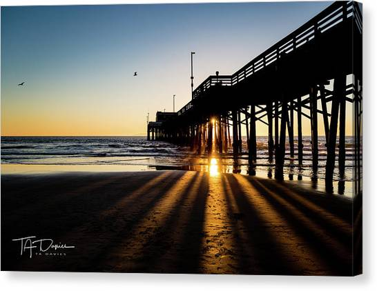 Rays Of Evening Canvas Print