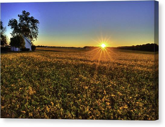 Rays Over The Field Canvas Print