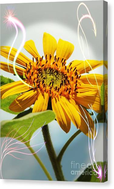 Reach For The Sun Canvas Print