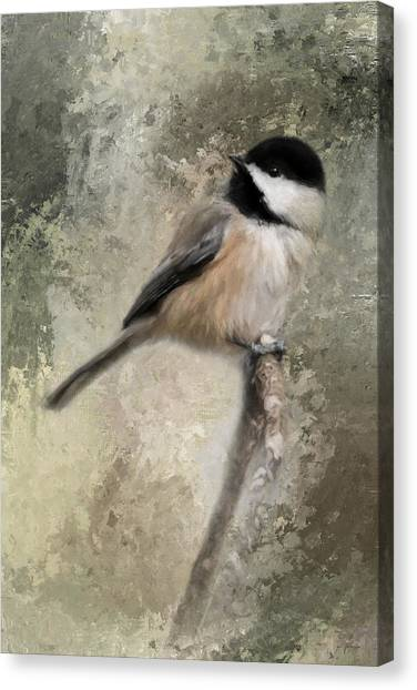 Ready For Spring Seeds Canvas Print