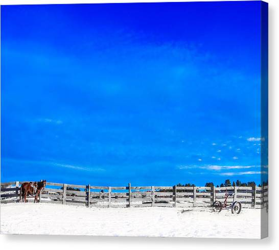 Ready For The Day Canvas Print