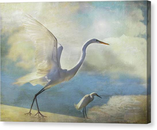 Ready To Soar Canvas Print