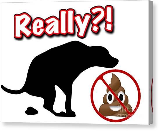 Really No Poop Canvas Print