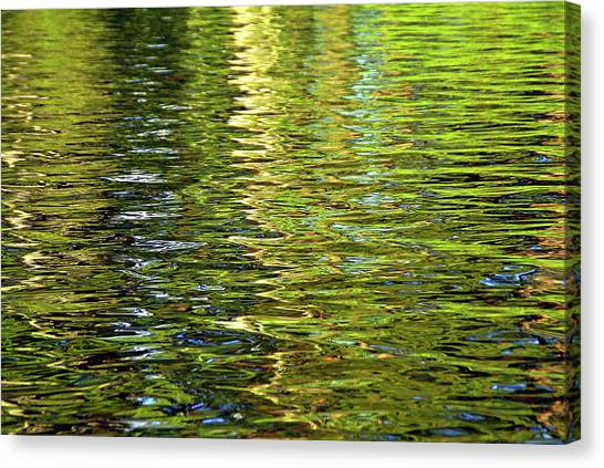 Canvas Print featuring the photograph Reams Of Light by Lynda Lehmann