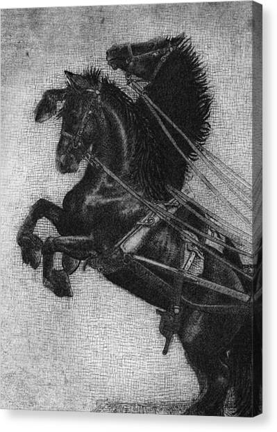 Black And White Canvas Print - Rearing Horses by Eric Fan