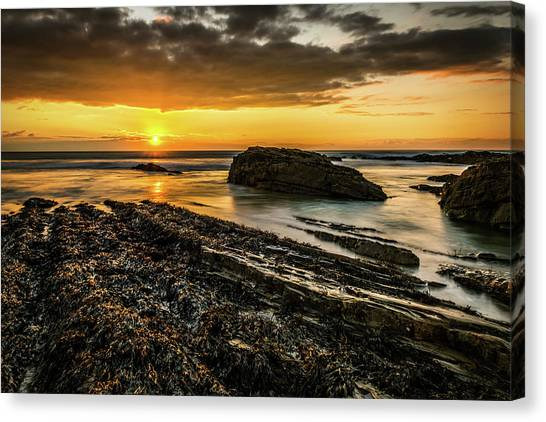 Canvas Print featuring the photograph Receding Tide by Nick Bywater