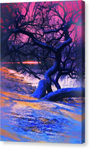 Reclining On The Banks Canvas Print