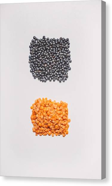 Black Top Canvas Print - Red And Black Lentils by Scott Norris