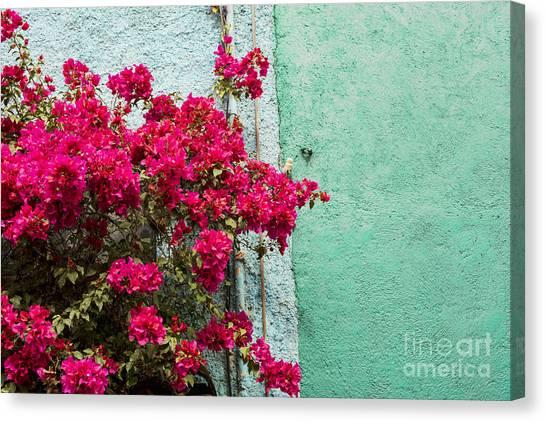 Guanajuato Canvas Print - Red And Blue by Juli Scalzi