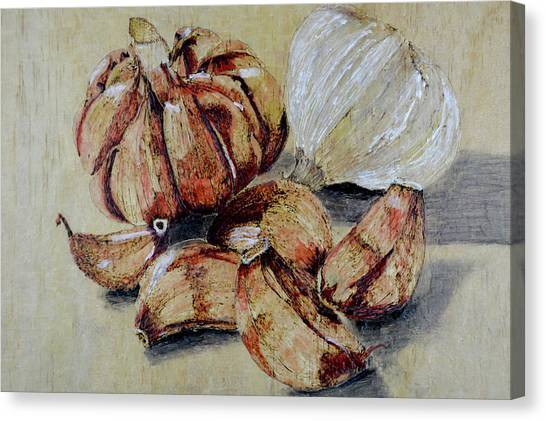 Red And White Garlic Canvas Print