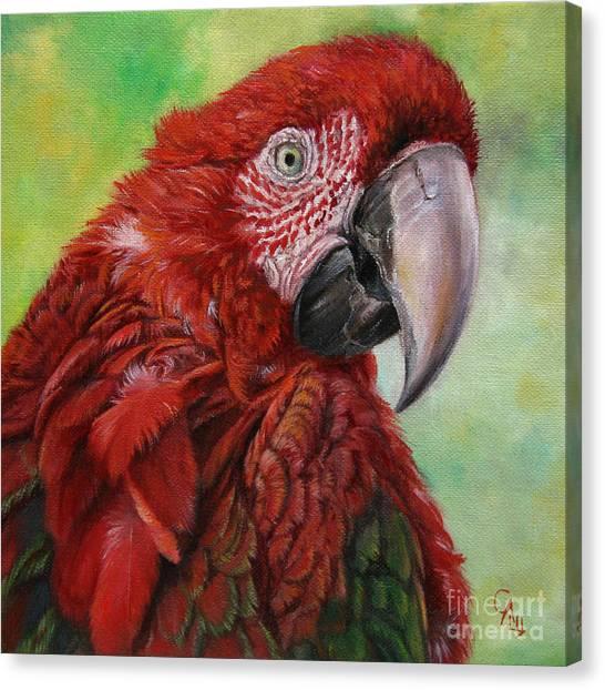 Red  Ara Chloropterus Macaw Canvas Print by Svetlana Ledneva-Schukina