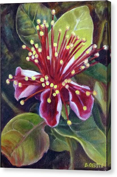 Pineapple Guava Flower Canvas Print