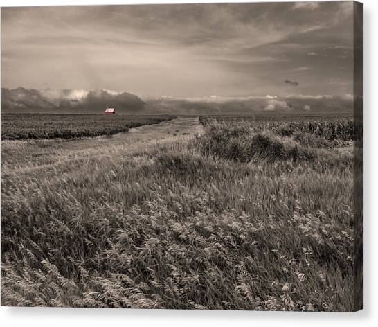 Corn Field Canvas Print - Red Barn by Don Spenner