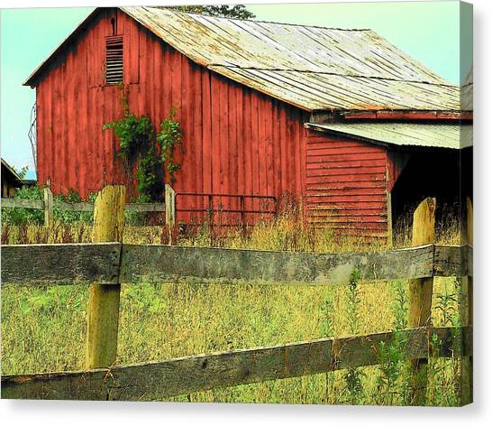 Red Barn With Vines Canvas Print by Michael L Kimble