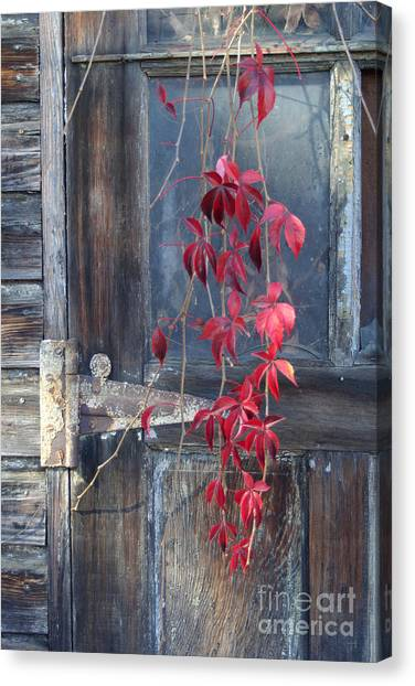 Red Canvas Print by Bernadette Kazmarski