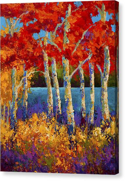 Aspen Canvas Print - Red Birches by Marion Rose