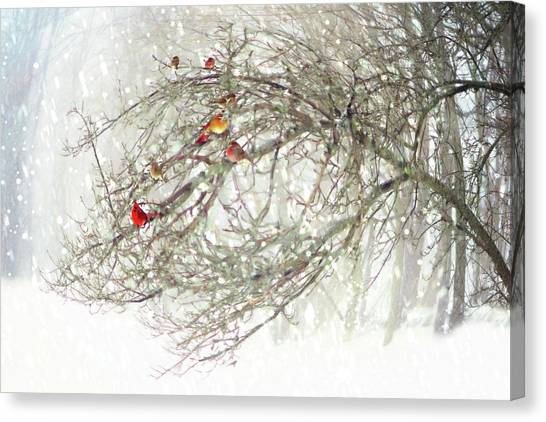 Red Bird Convention Canvas Print