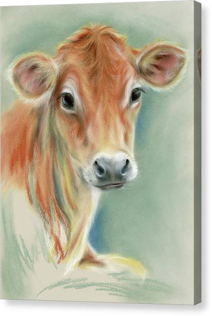 Red Calf Portrait Canvas Print