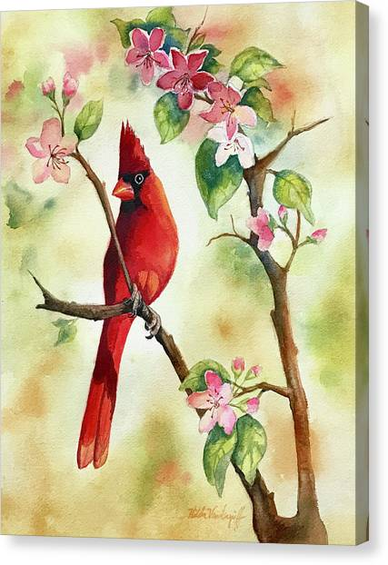 Red Cardinal And Blossoms Canvas Print
