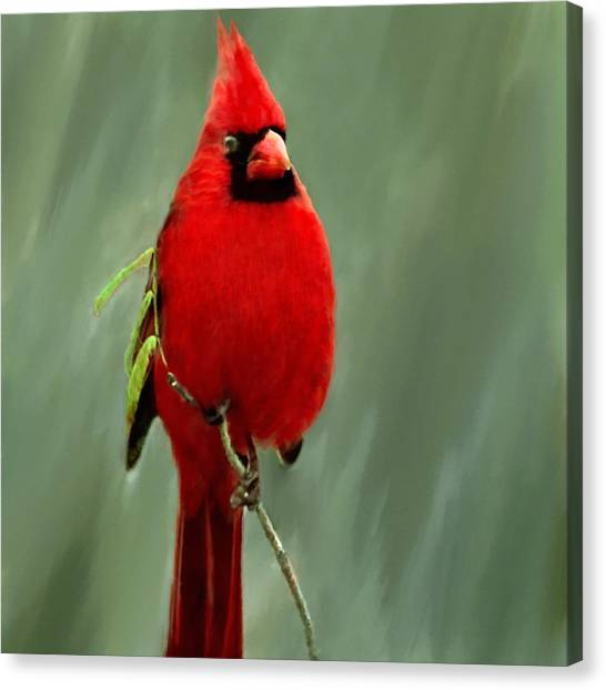 Wild Berries Canvas Print - Red Cardinal Painting by Bob and Nadine Johnston