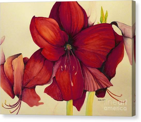 Red Christmas Amaryllis Canvas Print
