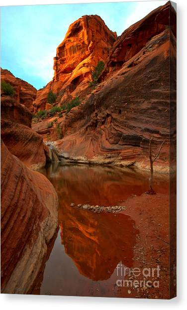 Red Cliffs Reflections Canvas Print