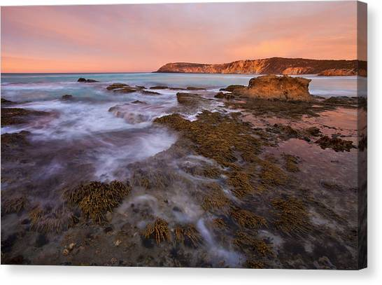 Pennington Bay Canvas Print - Red Dawning by Mike  Dawson