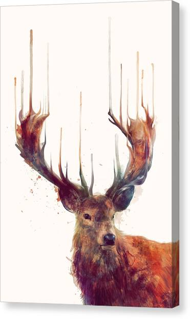 Deer Canvas Print - Red Deer by Amy Hamilton